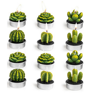 Decorative Cactus Tealight Candles – $14.89