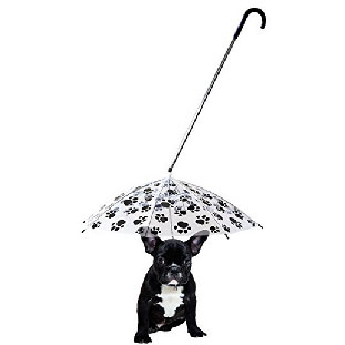 Dog Umbrella Leash – $16.99